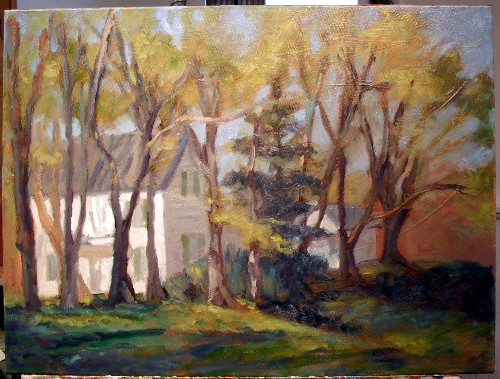 House in spring, step 5