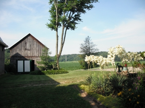 Blessinger Farm, initial view of little barn and valley