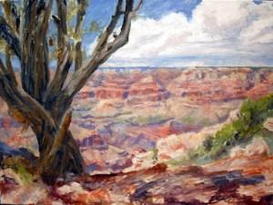Grand Canyon Moran Point Step 4