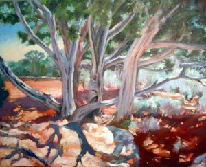 Junipers at Grand Canyon, final, oil on canvas, 24 x 30