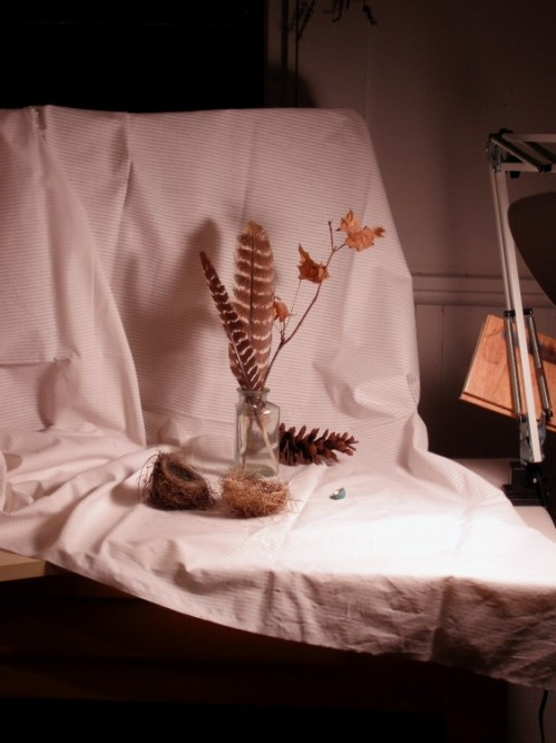 Typical still life set up. Notice the box with the drapery.