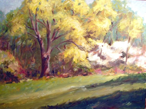 White oak in spring with dogwoods, 18 x 24, oil