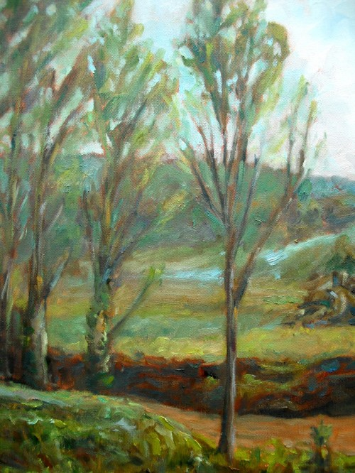 FrenchLickCreek,detail2