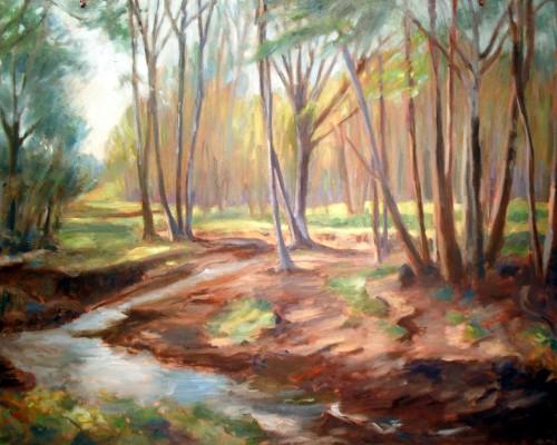 Ritter Creek, step 5,