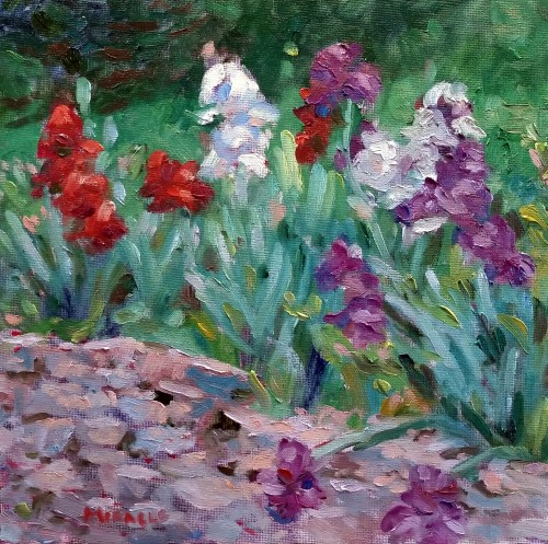 Kit Miracle, Irises, 10 x 10 oil