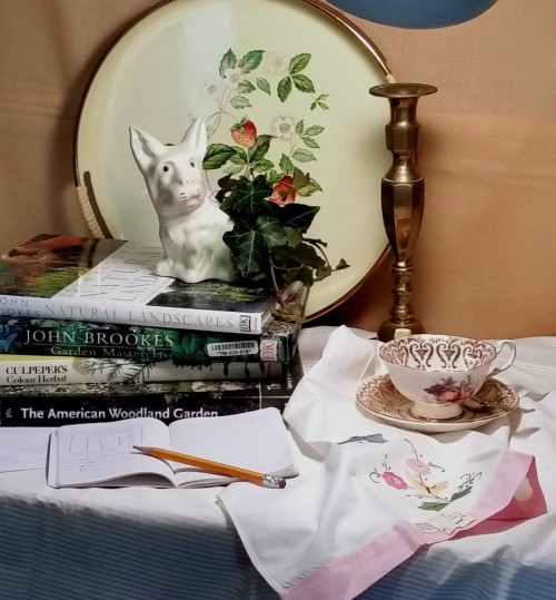 Initial still life set up with gardening books
