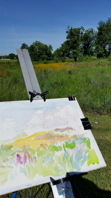 Preparing to paint the old oak tree and field of Black-eyed Susans