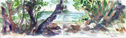 Plein air painting of Among the Mangroves, Florida Keys 2017